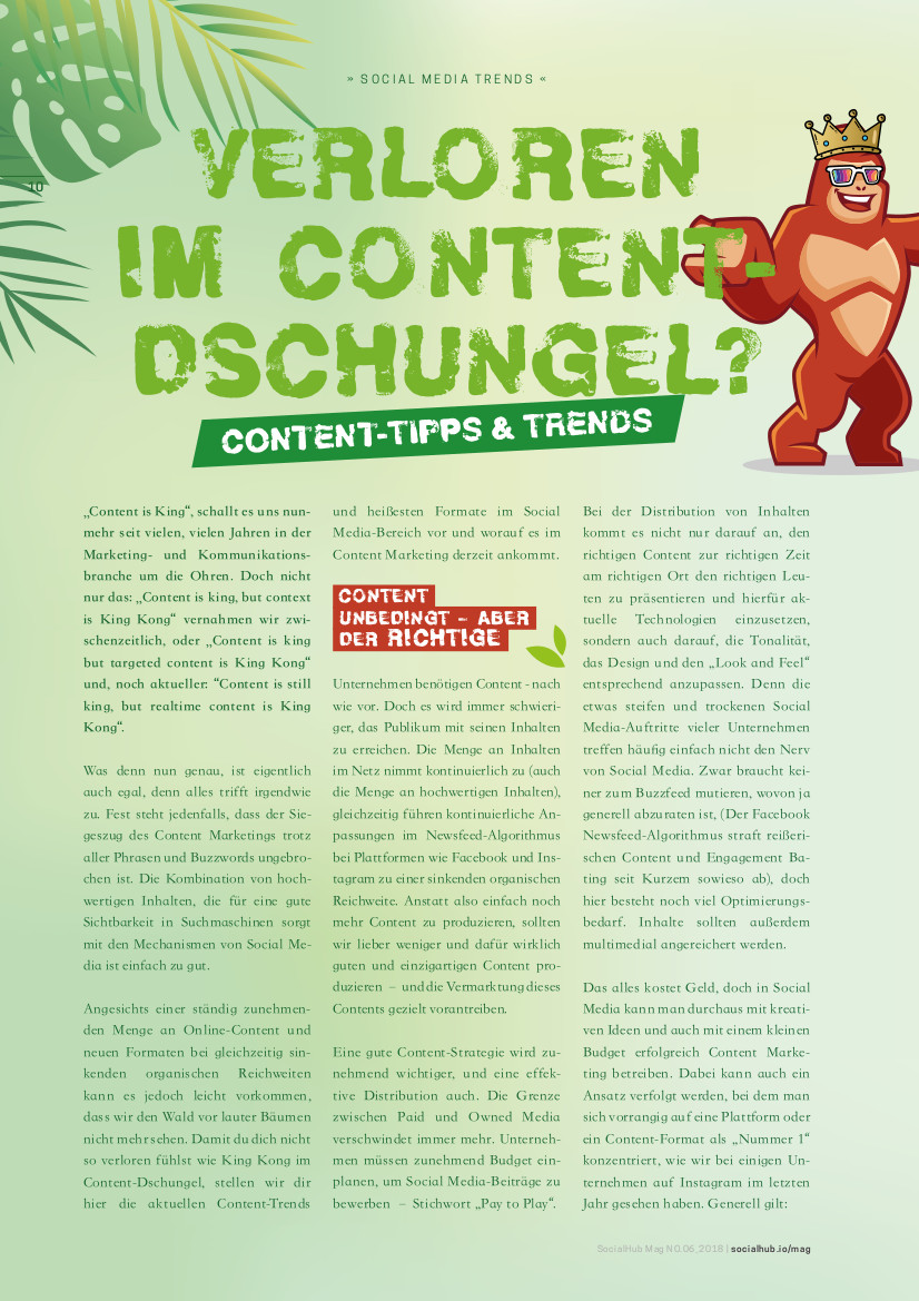 SocialHub Mag 6 Feature Artikel